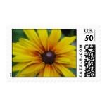 Black Eyed Susan Postage Stamp