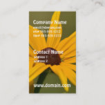 Black Eyed Susan Solitude Business Card