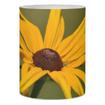Black Eyed Susan Solitude Flameless Candle
