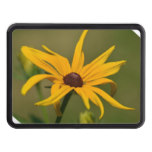 Black Eyed Susan Solitude Hitch Cover