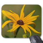 Black Eyed Susan Solitude Mouse Pad