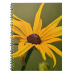 Black Eyed Susan Solitude Notebook