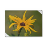 Black Eyed Susan Solitude Post-it Notes