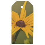 Black Eyed Susan Solitude Wooden Gift Tags