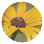 Blooming Black Eyed Susan Dinner Plate