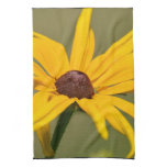 Blooming Black Eyed Susan Kitchen Towel