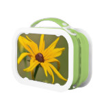 Blooming Black Eyed Susan Lunch Box
