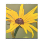 Blooming Black Eyed Susan Notepad