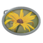 Blooming Black Eyed Susan Oval Belt Buckle