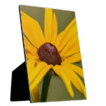 Blooming Black Eyed Susan Plaque