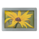 Blooming Black Eyed Susan Rectangular Belt Buckle
