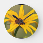 Blooming Black Eyed Susan Round Clock