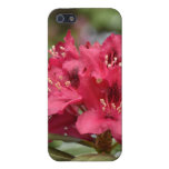Blooming Red Rhododendron Blossoms Flowering Case For iPhone SE/5/5s