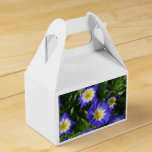 Blue and Yellow Morning Glories Favor Box