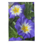 Blue and Yellow Morning Glories Towel