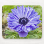 Blue Aster Flower Mouse Pad