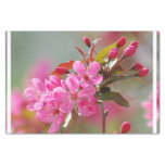 Dark Pink Cherry Blossoms Tissue Paper