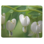 Delicate White Bleeding Heart Journal
