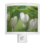 Delicate White Bleeding Heart Night Light