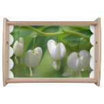 Delicate White Bleeding Heart Serving Tray