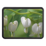 Delicate White Bleeding Heart Tow Hitch Cover