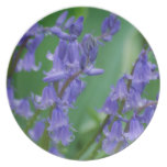 Dew on Bell Flowers Dinner Plate