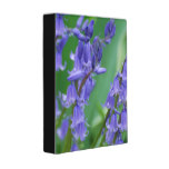Dew on Bell Flowers Mini Binder
