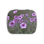 Field of Geraniums Candy Tin