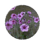 Field of Geraniums Jelly Belly Tin