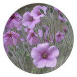 Field of Geraniums Melamine Plate