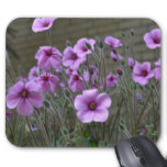 Field of Geraniums Mouse Pad
