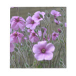Field of Geraniums Notepad