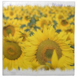 Field of Sunflowers Set of Four Napkins