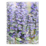 Flowering Ajuga Notebook