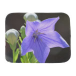 Flowering Balloon Flowers Baby Burp Cloth