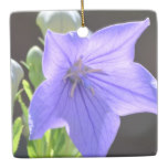 Flowering Balloon Flowers Ceramic Ornament