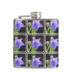 Flowering Balloon Flowers Flask