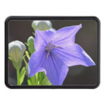 Flowering Balloon Flowers Hitch Cover