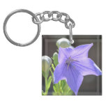 Flowering Balloon Flowers Keychain