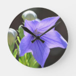 Flowering Balloon Flowers Round Clock