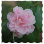 Flowering Pink Camelia Cloth Napkin
