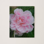 Flowering Pink Camelia Jigsaw Puzzle