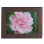 Flowering Pink Camelia Keepsake Box