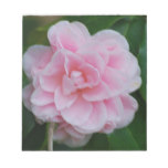 Flowering Pink Camelia Notepad