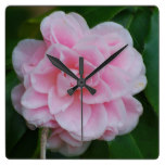 Flowering Pink Camelia Square Wall Clock