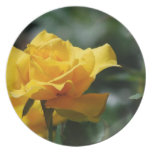 Golden Yellow Rose Bud Plate