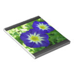 Morning Glory Flower Notepad