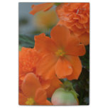 Orange Begonias Post-it Notes