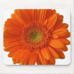 Orange Daisy Mouse Pad