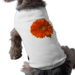 Orange Daisy Pet Shirt
